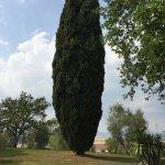 Photo de Villa Acquaviva