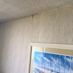 wallpaper peeling