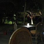 Photo de Les Dauphins Heureux Cafe Restaurant