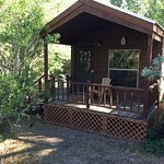 The cabin, the deck and the creek out the door.