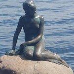 littlle mermaid