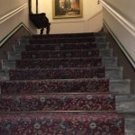Photo de St Olav Hotel