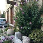 Photo de S. Nikolis Hotel & Apartments