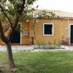 Nemorosa Houses Photo