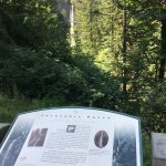 Guy Talbot State Park-billede