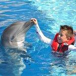 Foto de Dolphin Discovery Akumal