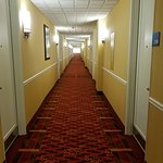 Photo de Holiday Inn Express Springfield