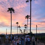 Sunset Palm Dinner - 6/24/17!