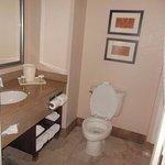 Foto de Comfort Suites Leesburg