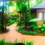 Samui Paradise Chaweng Beach Resort-billede