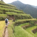 Foto di Terrazzamenti di Banaue