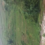 Photo of Muong Hoa Valley