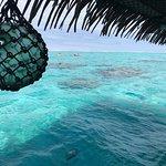 Foto de Koka Lagoon Cruises
