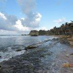 Bathsheba Beach Foto
