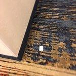 Photo de Holiday Inn Express Denver Aurora - Medical Center