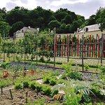 Jardin de la renaissance