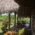Foto de Totoco Eco-Lodge