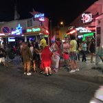 Stags / hens on main strip