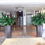 Peace Lilies adorn either side of the entrance in the Reception area.