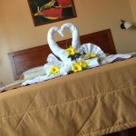 Lovely flowers on our bed