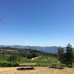 Foto di Pride Mountain Vineyards