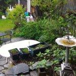 Porch/garden