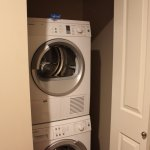 Two Bedroom Penthouse Special Needs Laundry in room