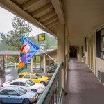 Снимок Timbers Motel