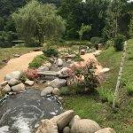 Photo de Les Jardins d'Eau