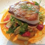 Chilean Sea Bass, roasted beets, fennel, in delicious summery orange sauce