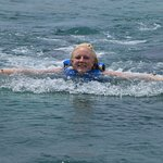 Ultimate Swim with the Dolphins Excursion