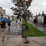 St. Louis Cemetary #3