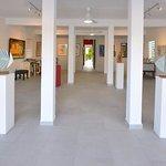 Photo de Tropismes Gallery
