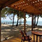 Pelican Beach - Dangriga-bild