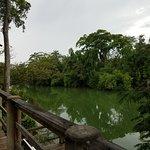 Black Orchid Resort Resmi