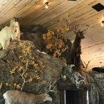 Bilde fra Bar N Ranch Restaurant
