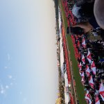 Greyville Racecourse Foto