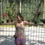 Kentucky Down Under Adventure Zoo