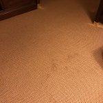 Sheraton Duluth Hotel Foto