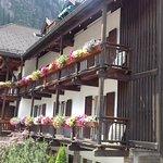 bellissimi balconi fioriti al Medil