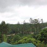 Photo de Tea Hill's Bungalow