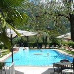 Outdoor Pool, which sits in an olive grove,