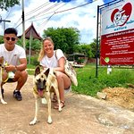 Photo of Lanta Animal Welfare