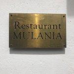 Mulania Foto