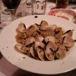 Clams with white sauce