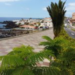 Foto de Bahía Flamingo Hotel