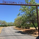 Drytown Cellars offers excellent wines at even better prices. Check it out!