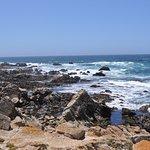 Foto de Monterey Bay