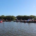 Foto de Tour the Glades