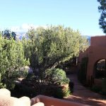 View towards Airport Mesa from front patio/deck Desert Dreams & Native Spirits.